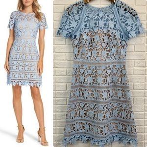 Eliza J lace overlay sheath dress baby blue nude